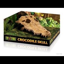 REPTIL Exo Terra Crocodile Skull Cocodrilo