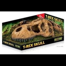 REPTIL Exo Terra T-Rex Skull Craneo
