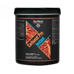 ACM Grotech Carbonat Pro instant 1000g