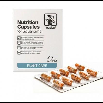 AC Tropica Nutrition Capsules x10