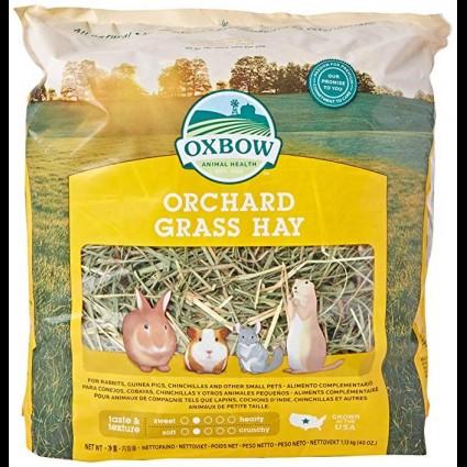 Oxbow Heno de Huerto Orchard Grass Hay 500g