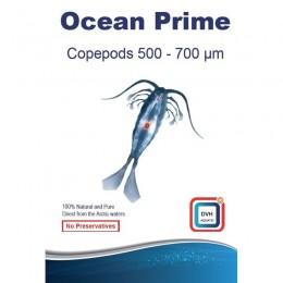Ocean prime copepodos