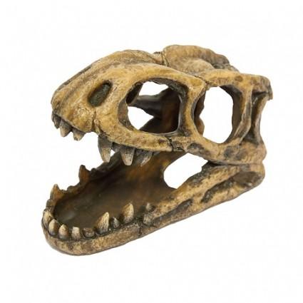 AC Decoración Cabeza Fósil Tiranosaurio Rex