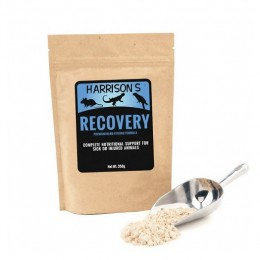 Harrison´s BF Recovery Formula 350G