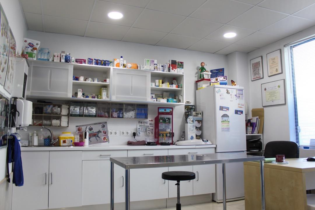 Nuestra Clínica veterinaria Azureus en Cáceres