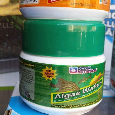 Tabletas para herbívoros de fondo