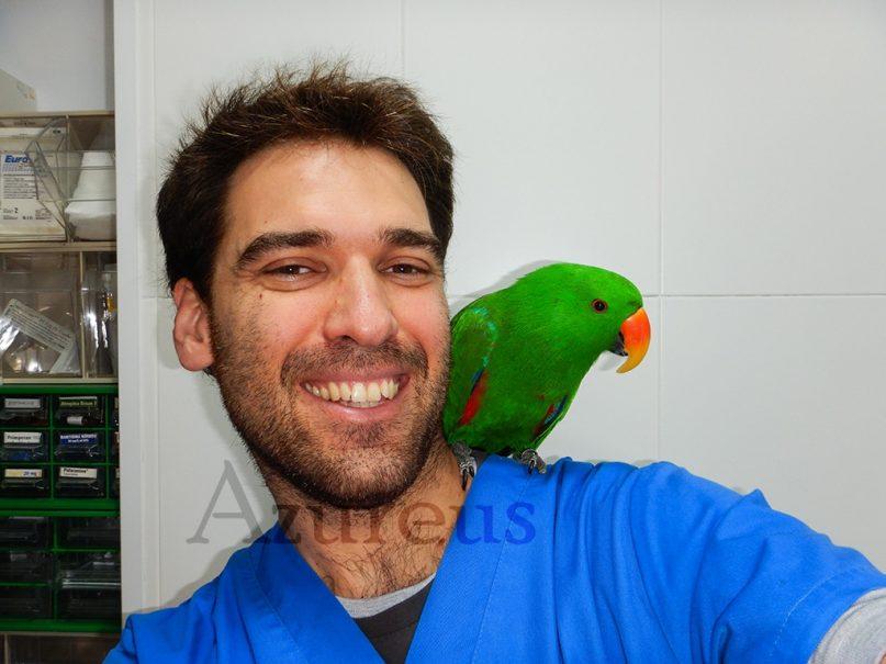 Alejandro con Rufo (Eclectus roratus)