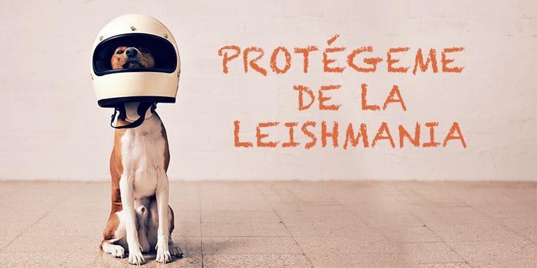 Protégeme de la Leismania